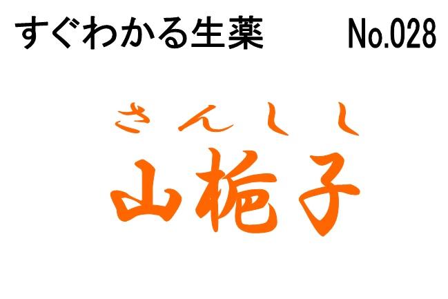 028山梔子